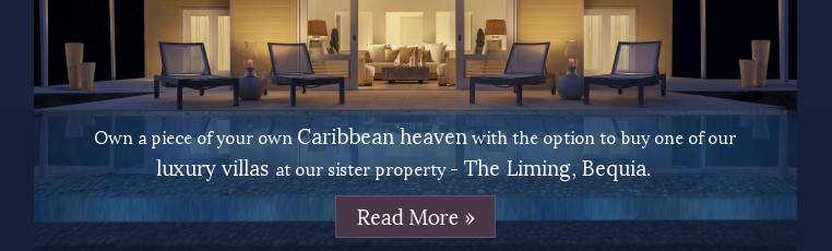 The Liming Real Estate